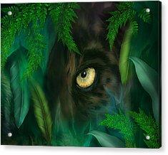Jungle Eyes - Panther Acrylic Print by Carol Cavalaris