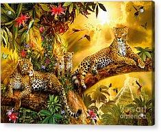 Jungle Jaguars Acrylic Print by Jan Patrik Krasny
