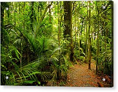 Jungle Scene Acrylic Print by Les Cunliffe