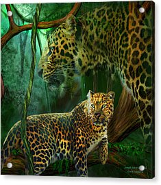 Jungle Spirit - Leopard Acrylic Print by Carol Cavalaris