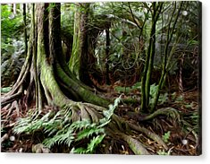 Jungle Trunks3 Acrylic Print by Les Cunliffe