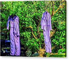 Just Hanging Around Acrylic Print by MJ Olsen