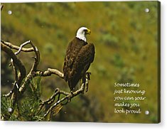 Just Knowing Acrylic Print by Jeff Swan