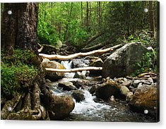 Just Outside Of Gatlinburg Acrylic Print by Mountain Dreams