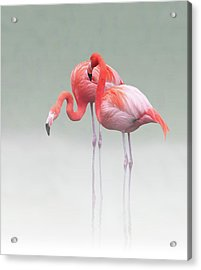 Just We Two ... Acrylic Print by Anna Cseresnjes