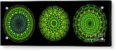 Kaleidoscope Triptych Of Glowing Circuit Boards Acrylic Print by Amy Cicconi