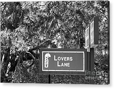 Kansas State University Lovers Lane Acrylic Print by University Icons