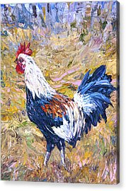 Kapaa Rooster Acrylic Print by Steven Boone