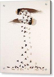 Kim's Turkeys Acrylic Print by Chris Maynard