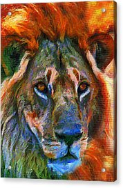King Of The Wilderness Acrylic Print by Georgiana Romanovna