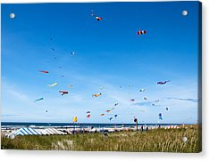 Kite Festial Acrylic Print by Robert Bales