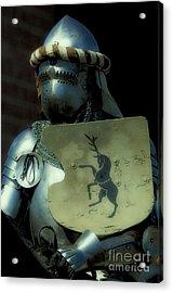Knight 9 Acrylic Print by Bob Christopher