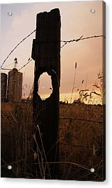 Knot Your Average Sunset Acrylic Print by Angi Parks