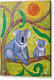 Koala Sunrise Acrylic Print by Sarah Loft