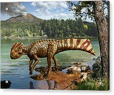 Koreaceratops Hwaseongensis Acrylic Print by Julius Csotonyi