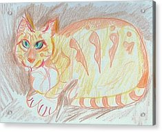 Fanciful Cat Acrylic Print featuring the painting Krystallos by Anita Dale Livaditis