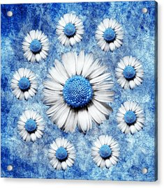 La Ronde Des Marguerites - Blue V05 Acrylic Print by Variance Collections