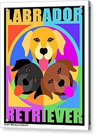 Labrador Retrievers Acrylic Print by Michelle Guillot