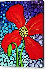 Lady In Red - Poppy Flower Art By Sharon Cummings Acrylic Print by Sharon Cummings