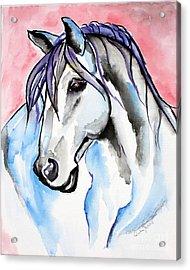 Lady Velvet - Horse Art By Valentina Miletic Acrylic Print by Valentina Miletic