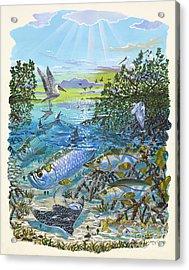 Lagoon Acrylic Print by Carey Chen