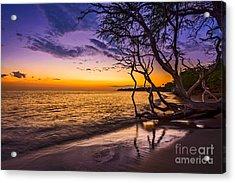 Lahaina Twilight Acrylic Print by Jamie Pham