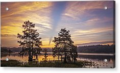 Lake Music Acrylic Print by Steve DuPree