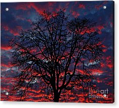 Lake Oswego Sunset Acrylic Print by Nick  Boren