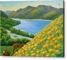 Lake Sonoma Poppies Acrylic Print by David LeRoy Walker