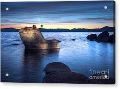 Lake Tahoe Bonsai Rock Acrylic Print by Dianne Phelps