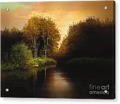 Lake Trees Acrylic Print by Robert Foster