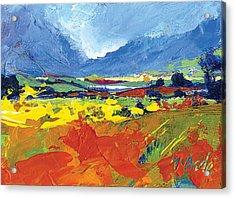Lakeland Splash Acrylic Print by Neil McBride