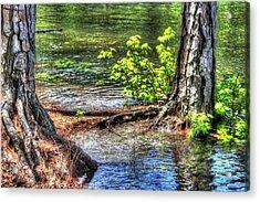 Land Bridge Acrylic Print by Daniel Eskridge