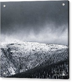 Land Shapes 2 Acrylic Print by Priska Wettstein