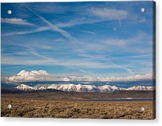 Landscape By A Lake Crowley With White Acrylic Print by Panoramic Images