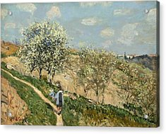 Landscape. Spring At Bougival Acrylic Print by Alfred Sisley