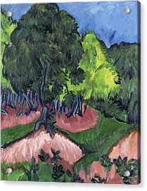 Landscape With Chestnut Tree Acrylic Print by Ernst Ludwig Kirchner