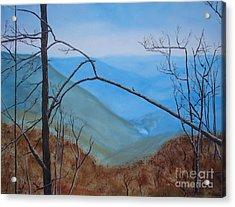 Lane Pinnacle Acrylic Print by Stuart Engel