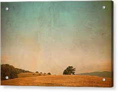 Last August 02 Acrylic Print by Violet Gray
