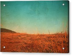 Last August 03 Acrylic Print by Violet Gray