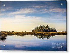 Late Day Hammock Acrylic Print by Marvin Spates