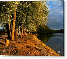 Late Evening On White River Acrylic Print by Julie Dant