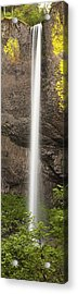 Latourell Falls Panorama Acrylic Print by Andrew Soundarajan