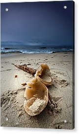 Laughing With A Mouth Full Of Sand Acrylic Print by Peter Tellone