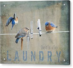 Laundry Day - Lets Do Laundry Acrylic Print by Jai Johnson