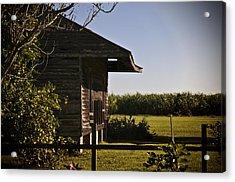 Laura Plantation Slave Home Acrylic Print by Ray Devlin