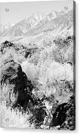 Lava Outcrop-white Mountains Acrylic Print by Harold E McCray