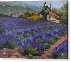 Lavandin En Fleur Acrylic Print by Diane McClary