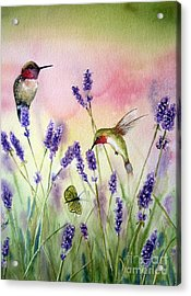 Lavender And Hummingbirds Acrylic Print by Patricia Pushaw