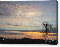 Lazy Day Acrylic Print by Michael Waters